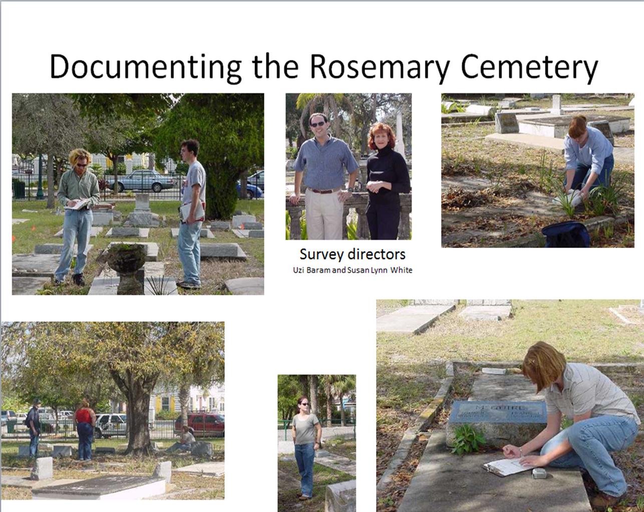 Rosemary survey images