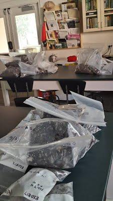 artifact bags