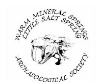 WMS LSS logo